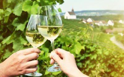 Weinfest am Stein